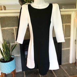 ZARA | Colorblock Dress with Ruffle Hem - S